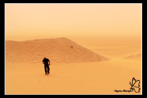 Lost... (bild från flickr)