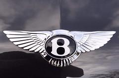Bentley Continental GT Speed Emblem