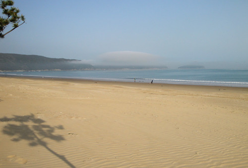 The strange mists of Wando, part 2