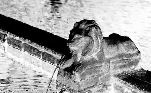 X-Ray Lion. (Fuji Superia Reala 100 — Negative Scanned as Positive — Converted to Black and White. Olympus OM-1. Epson V500.)
