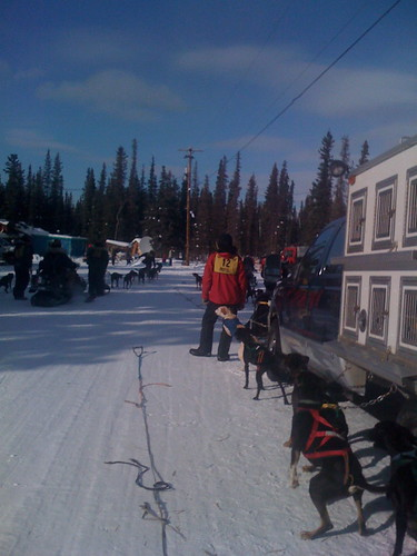 2009 Tanacross Dog Sled Races