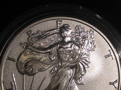 2006-W Reverse Proof Silver Eagle (1)