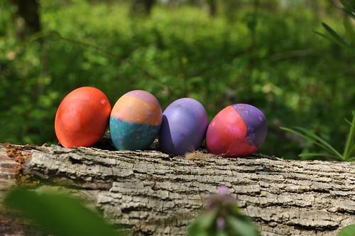 Easter Eggs 2009 (17)