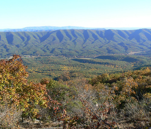 Sinking Creek Mountain - Top -  Changing Leaves in Valley (Cropped)