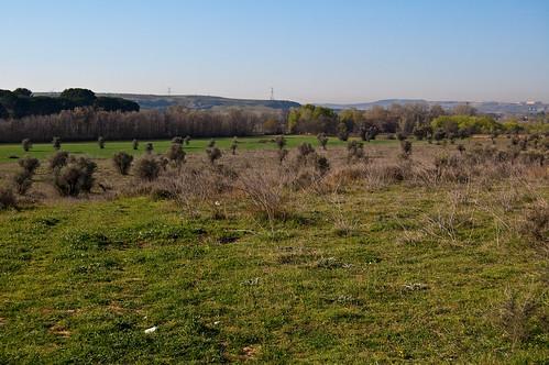 Vistas junto al castillo de Aldovea
