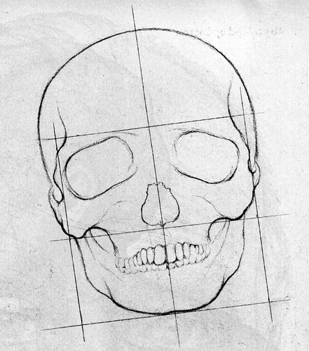 How to Draw a Face - the skull