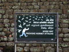 99a - Signs warning of the hornets at Sigiriya