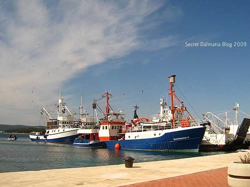 Biograd harbor - fishermen waiting for bura to end...