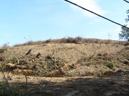 Semua ini akan hilang, diratakan mungkin. Tanah di sini tidak sesuai dibangunkan, melainkan diratakan.