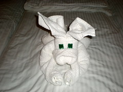 Towel Origami No. 2 - Dog