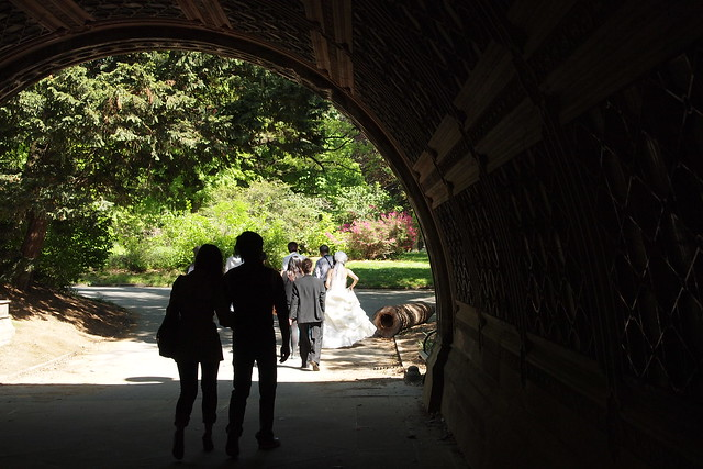 A small wedding party making their way under a bridge in Prospect Park