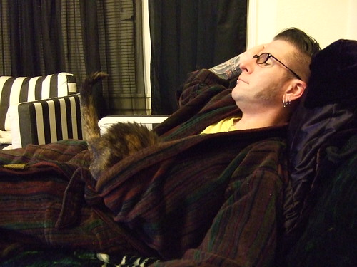 cat in bathrobe
