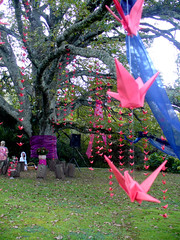 1,000 cranes surround the 100-yr-old oak!