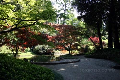 Oriental Garden, Villa Melzi Gardens, Bellagio, Lake Como, Italy