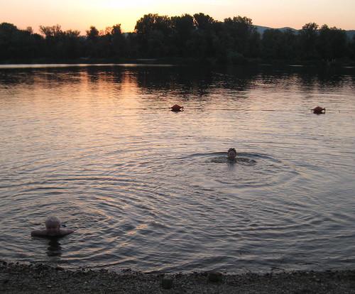 The Boys Enjoying A Mid Summer Nights Swim