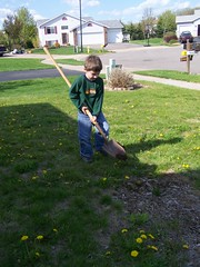 Using the shovel