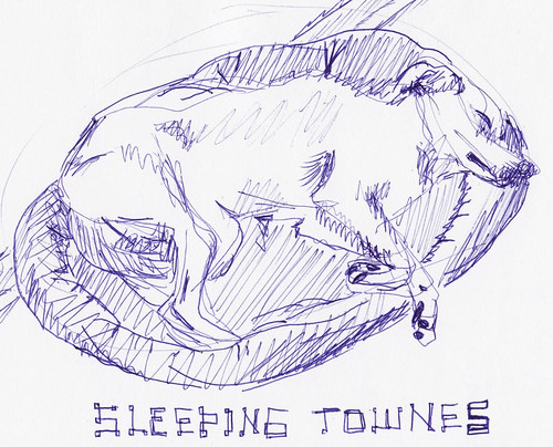 sleeping townes