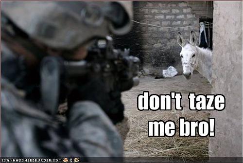 LOL donkey