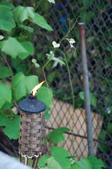 Tiki Torch Burns