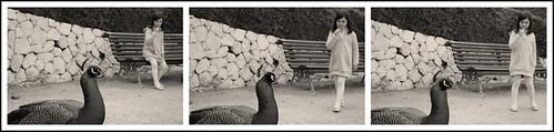 La niña y el pavo