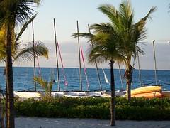 Turks & Caicos 2009 024