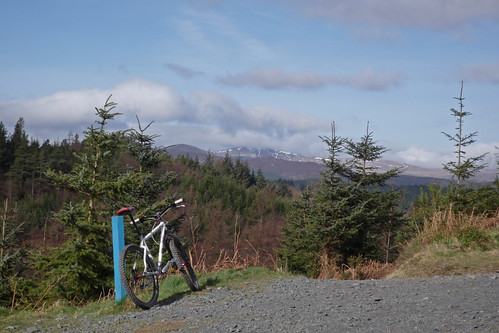 snowdon trail