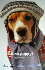Sick Puppy - Sick As A Dog