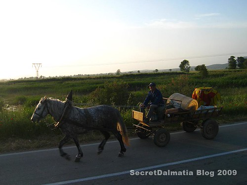 Traditional means of transport - still alive and kickin