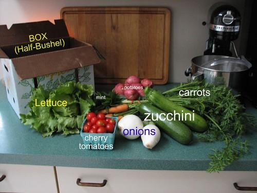 Contents Box 5
