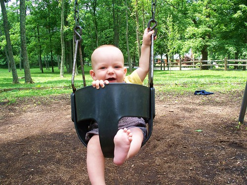 Someone really likes to swing!