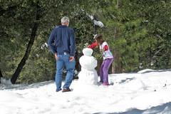 Yosemite Snowman