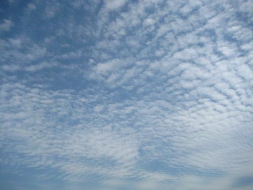 china trip blue school sky clouds children henan zhengzhou
