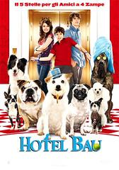Locandina del film Hotel Bau