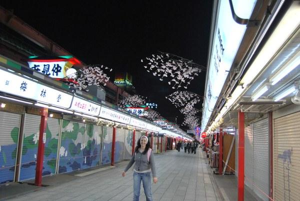 Vero en Nakamise-dōri de noche