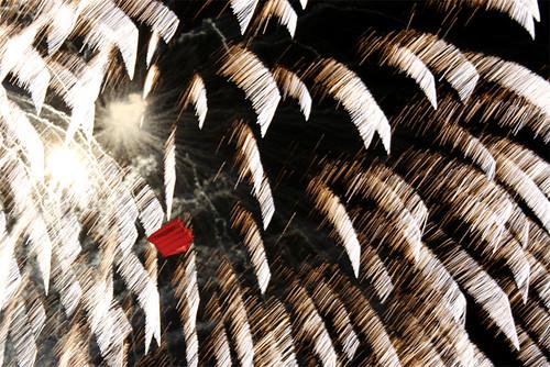 feu d'artifice et cerf voalnt