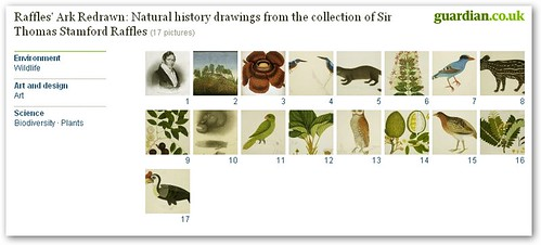 Raffles' Ark Redrawn: Natural history drawings from the collection of Sir Thomas Stamford Raffles
