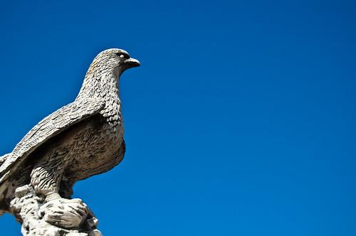 El águila petrificada