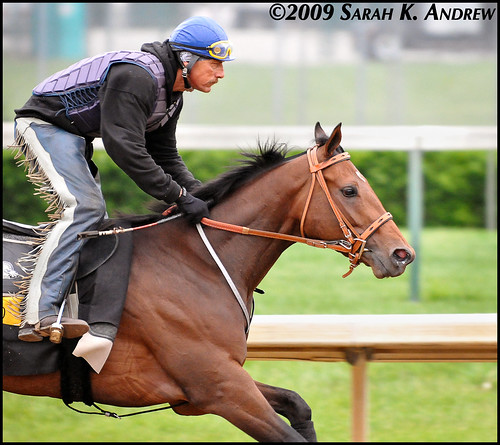 Mine That Bird and exercise rider Charlie Figueroa