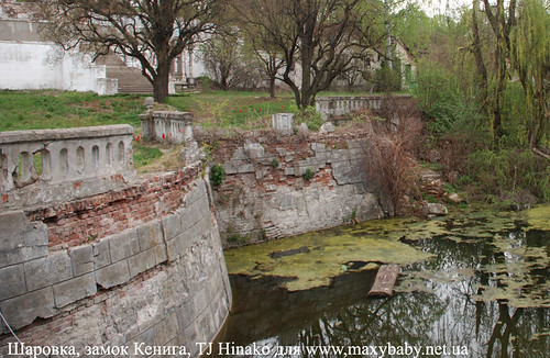 Пруд у замка Кенига