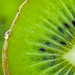Kiwi by Mike Haufe