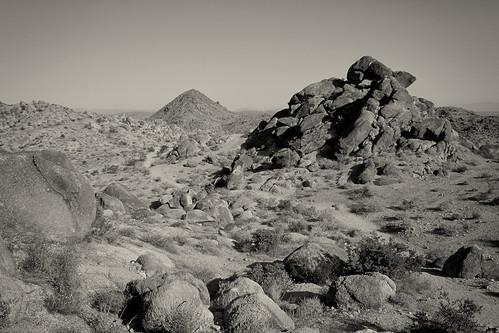 Desert Scenery by you.