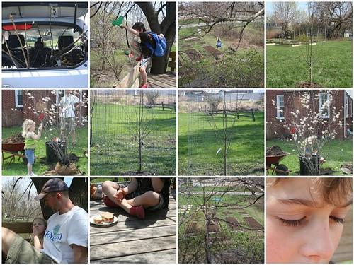 Arbor Day Weekend