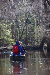 Canoeing the Congaree Swamp
