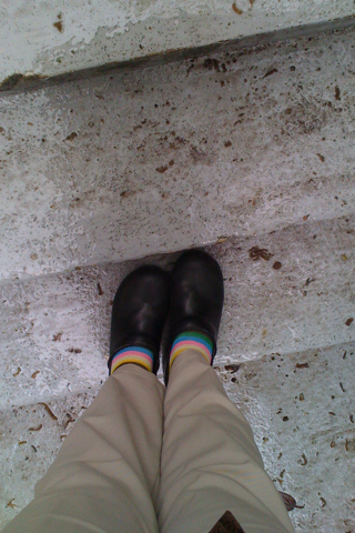 rainbow socks in the rain