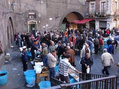 Catania 2009 Pescheria