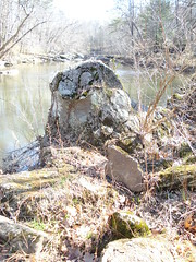 Rock in creek