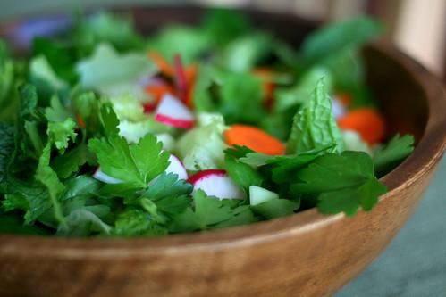 CSA Garden Salad