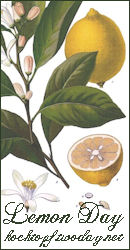 Lemon Day - last day of submisson/abgabeschluss April 2