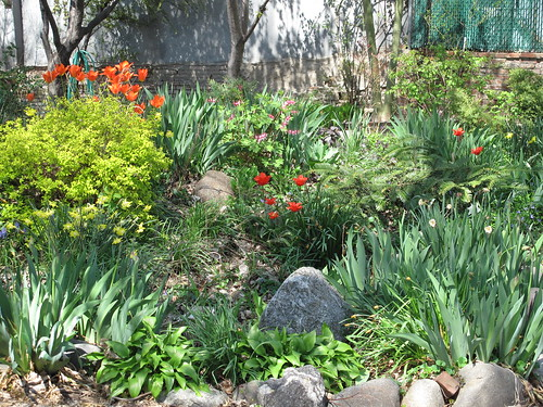 Backyard Community Garden, Red Hook