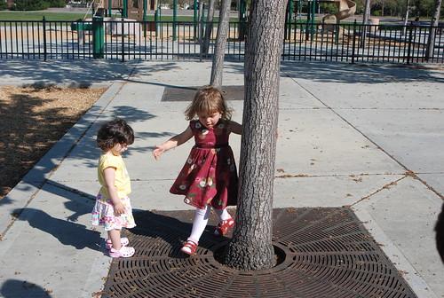 Around and around the tree